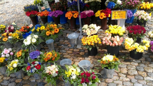 Flowers for sale at the farmer's market in Münsterplatz, Freiburg, Germany.