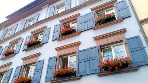 Blue shutters and red flower boxes, Freiburg, Germany.