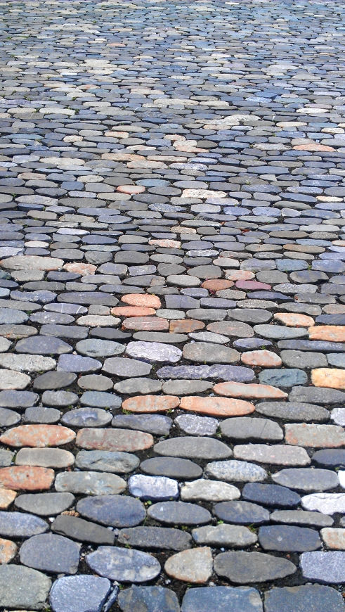 A detailed cobblestone street in Freiburg, Germany.