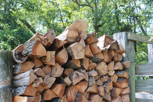 logs-pile-chopped-wood