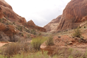 Negro Bill Canyon.