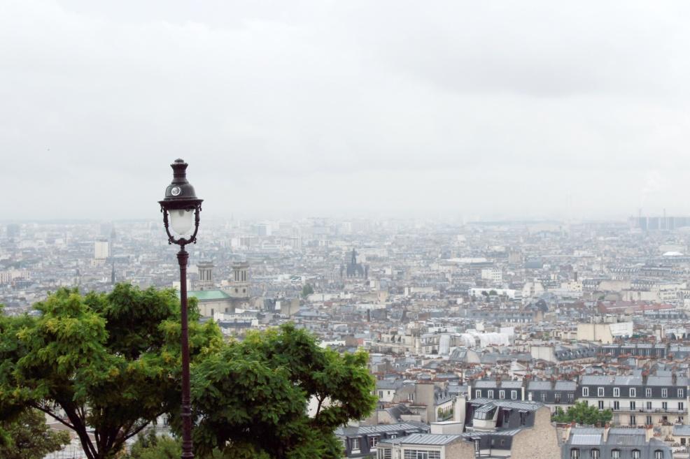 View from la Basilique du Sacré Cœur.