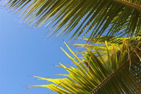Grand Bahia Principe Coba.