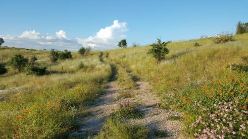 Nevsehir-Hill-Landscape