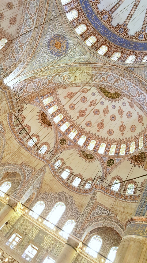 Sultan Ahmet Camii (The Blue Mosque).